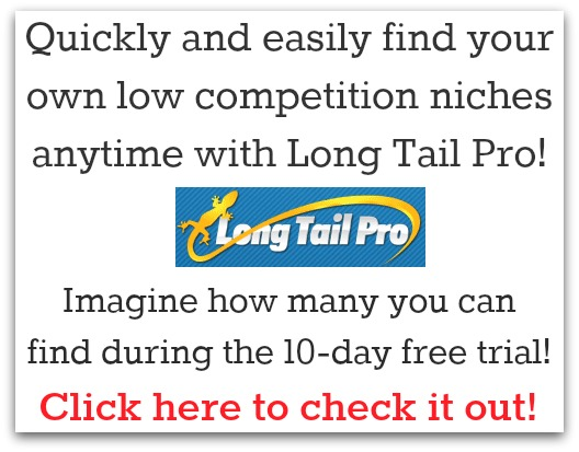 low competition niche ideas