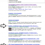 The Importance of Google Plus and the Impact on Your SEO